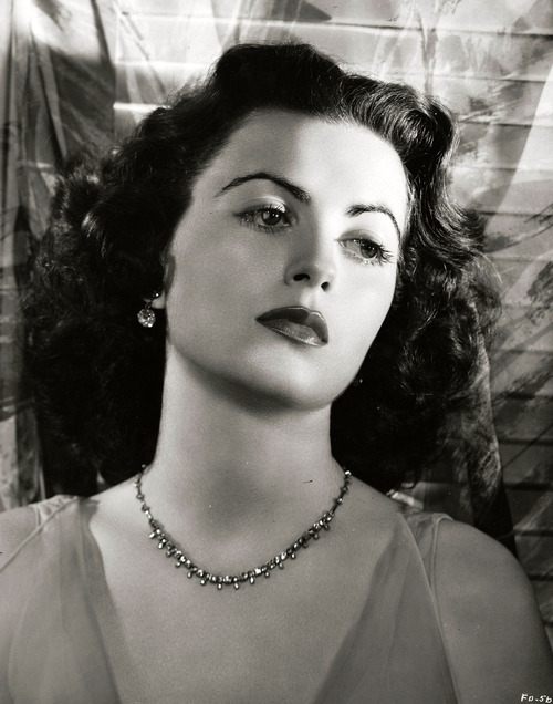 faith domergue bonanzafaith domergue the aviator, faith domergue photos, faith domergue pronunciation, faith domergue images, faith domergue you, faith domergue bio, faith domergue find a grave, faith domergue imdb, faith domergue howard hughes relationship, faith domergue the aviator actress, faith domergue car, faith domergue pictures, faith domergue bonanza, faith domergue feet, faith domergue photo gallery, faith domergue hot, faith domergue this island earth, faith domergue howard hughes